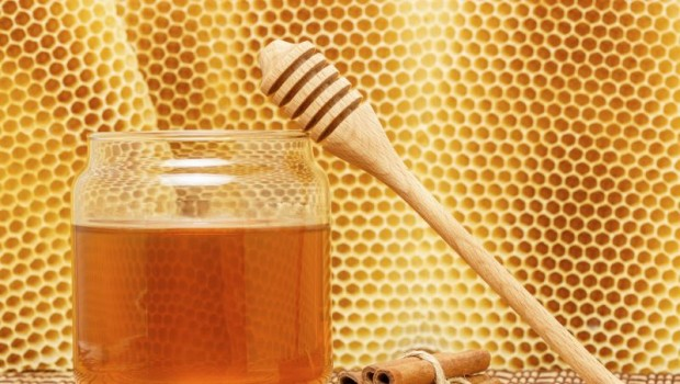 10 Surprising Benefits of Honey and Cinnamon (with one Simple Recipe)