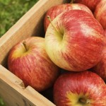 Box of red apples