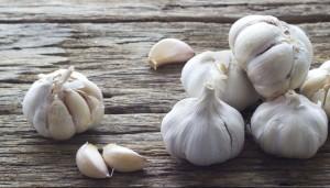 Garlic on the wooden background